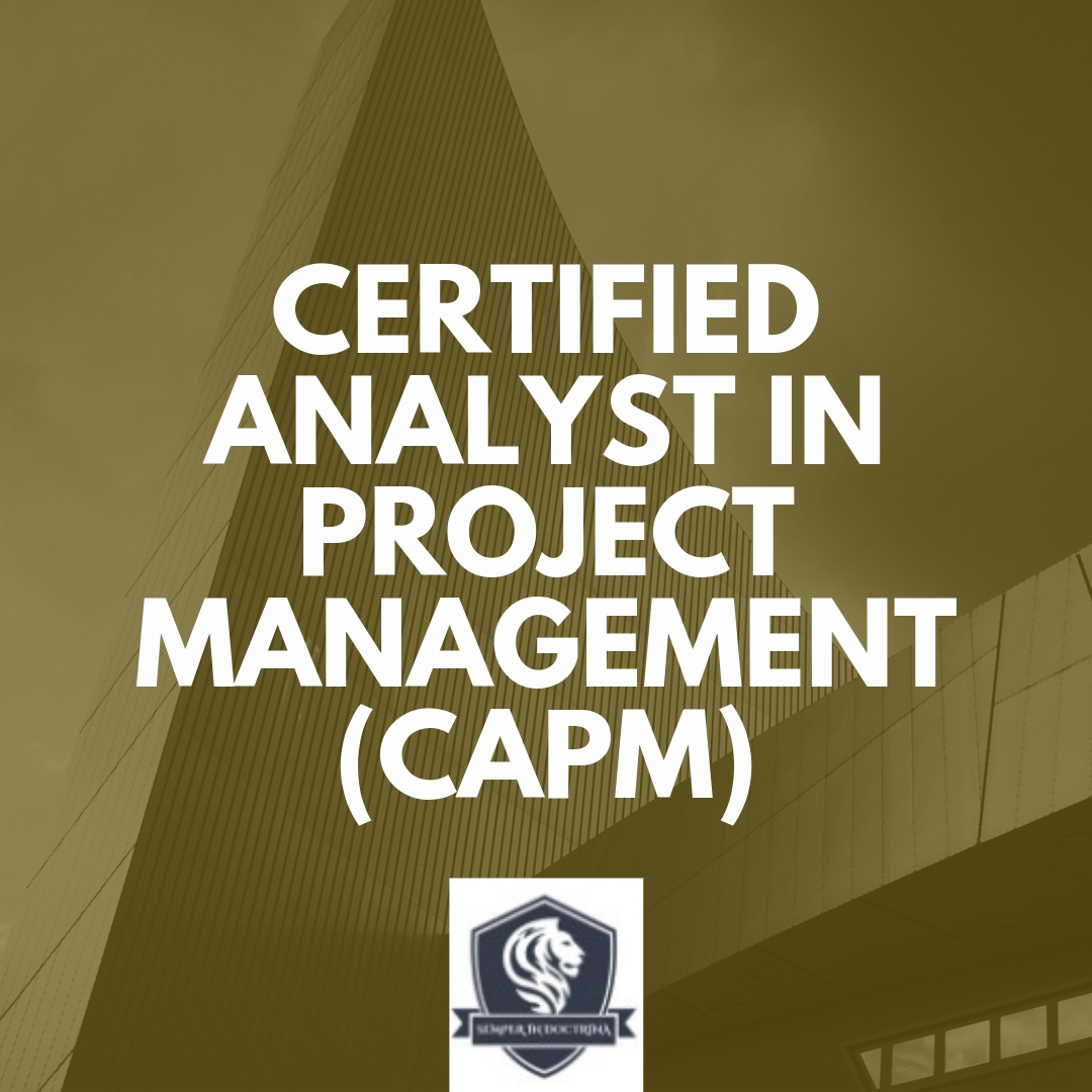 Certified Analyst In Project Management (CAPM)